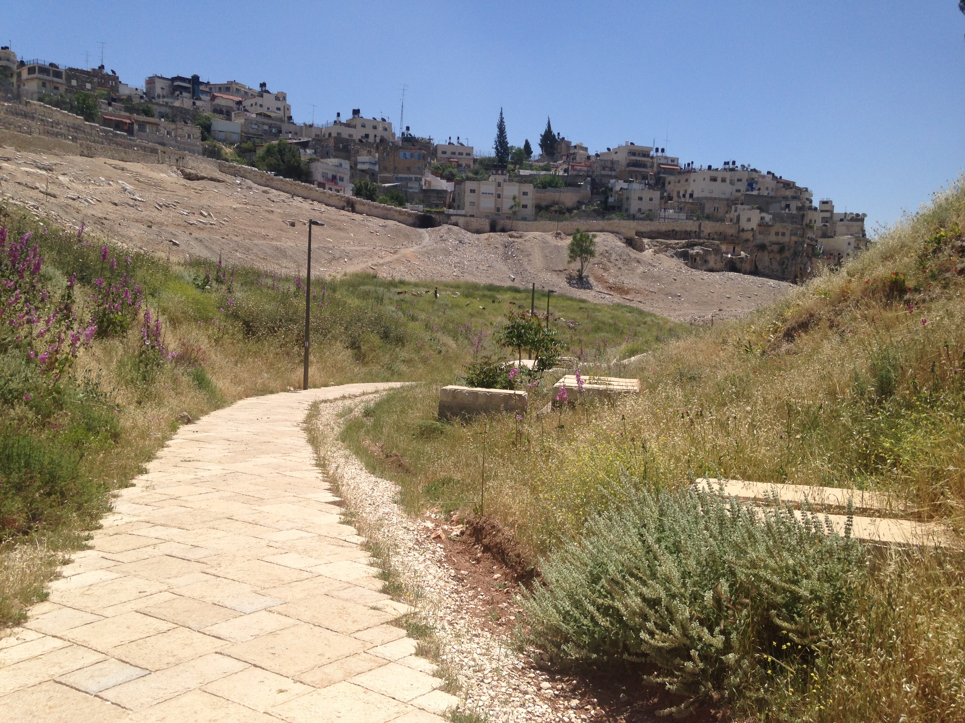 Meaning Of Kidron Valley - Img_2075 copy